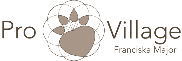 Logo Pro-Village
