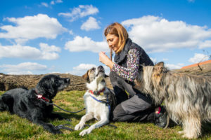 Galina mit Hunden - Blogbeitrag