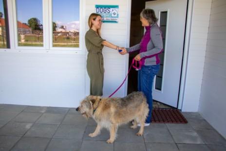 Übergabe von Hund an neue Besitzerin